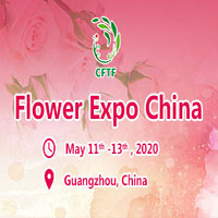 flowerexpochina